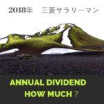 【配当 月10万】2018年の年間配当収入は120万円を超える見込み(税引後)!
