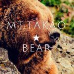 高尾山に熊はいるのか? 100回登って検証