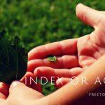 「インデックス投資」か「個別株で配当収入を目的とする」か