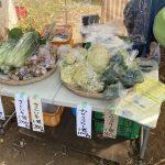 【適度な田舎】新鮮な野菜を安く手に入れる方法:農家さんから直接